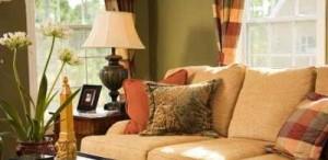 interjeras, pagalvėlės ant sofos