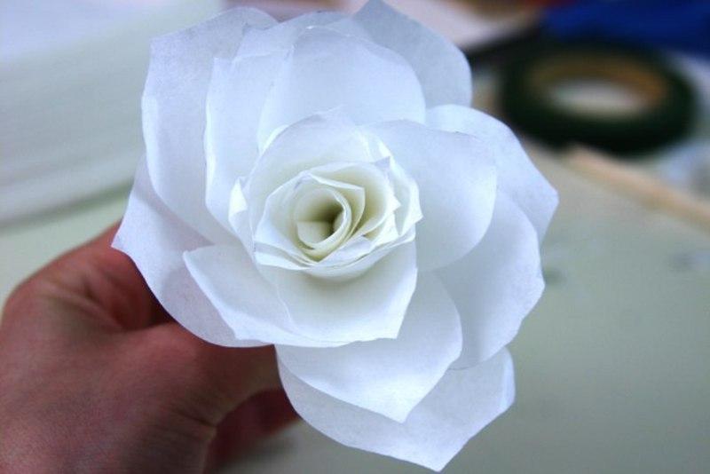 Gėlės – puikus namų interjero akcentas