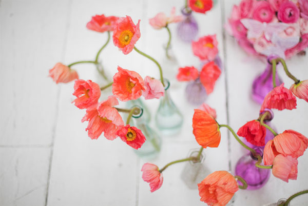 raudonos gėlės stiklinėse vazose