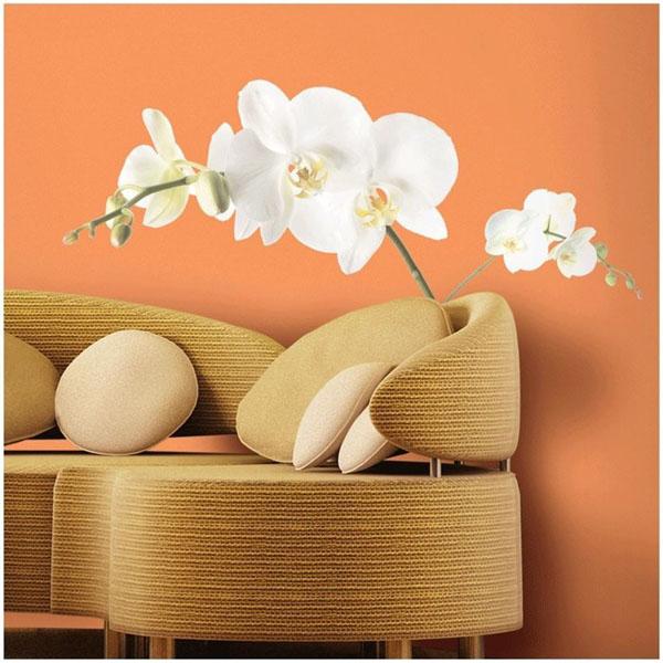 balta gėlė, and rausvos sienos, fototapetas