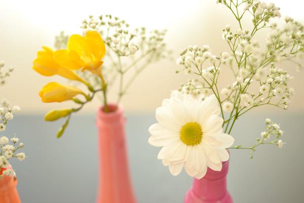 gėlės dažytuose buteliuose, vazelėse