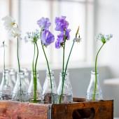 violetinės gėlytės stikliniuose buteliuose medinėje dėžėje
