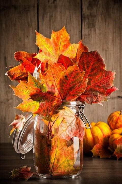 rudeniniai lapai stiklainyje