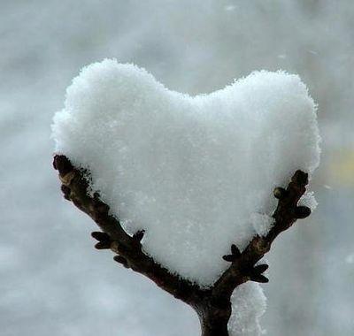 hearts-11