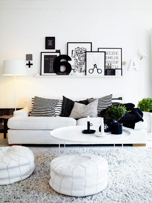 zali augalai balta juoda svetaine