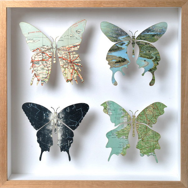 drugeliai aplikacija paveikslas
