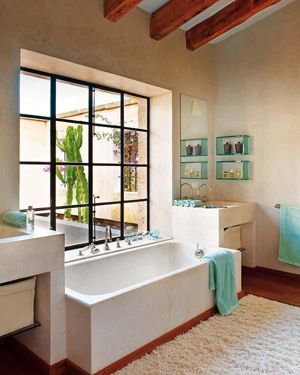 vonia-langas-kaktusas